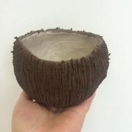150927-kokos