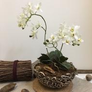 ya-kashpo-orhideya